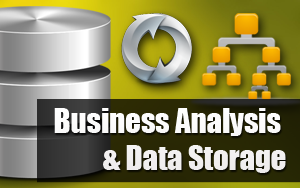 Business Analysis and Data Store