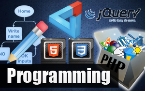 Web-sites and Programming